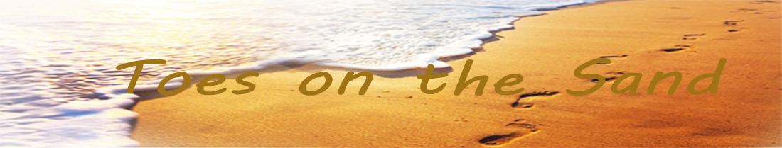 Golden beach Sri Lanka