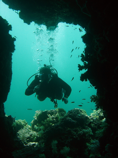 Diving in Sri Lanka waters