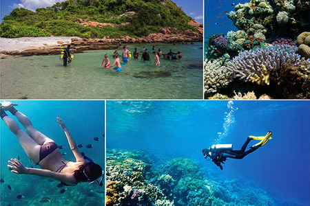 Diving underwater activities in Sri Lanka